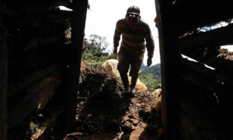 Ven impacto ambiental de minería ilegal en Colombia
