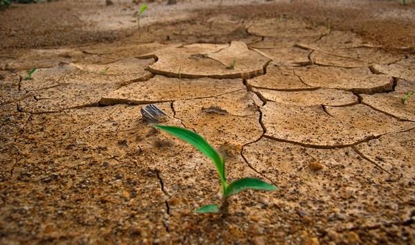 cambio climatico entrevista_ezio_costa_002