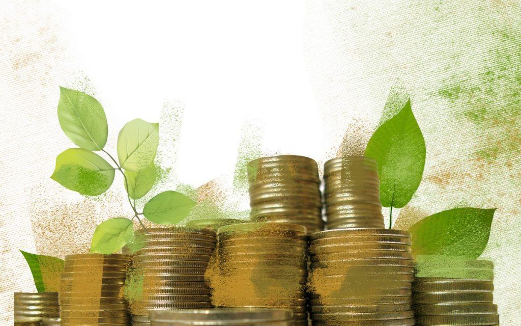 Impuestos verdes_foto_001